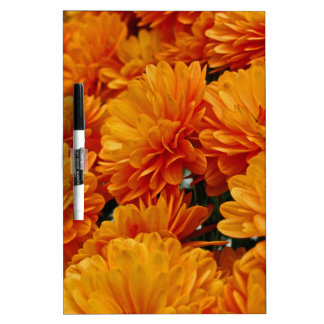 Orange Mums Dry-Erase Whiteboard