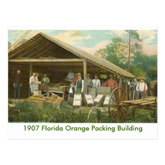 Orange Packing Building Postcard
