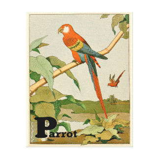 Orange Parrot in the Jungle Alphabet Canvas Print