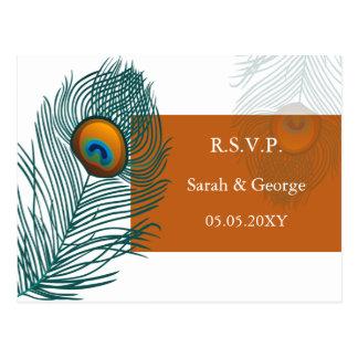 orange peacock wedding  rsvp postcard