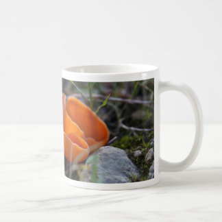 Orange peel fungus, Aleuria aurantia Coffee Mug