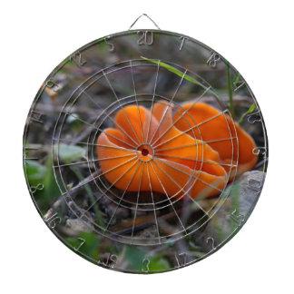 Orange peel fungus, Aleuria aurantia Dartboard
