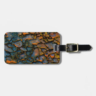Orange Petrified dinosaur bone Bag Tag