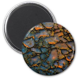 Orange Petrified dinosaur bone Magnet