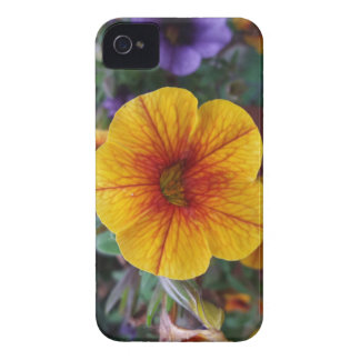 Orange Petunia iPhone 4 Case