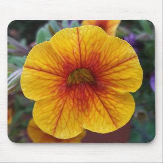 Orange Petunia Mouse Pad