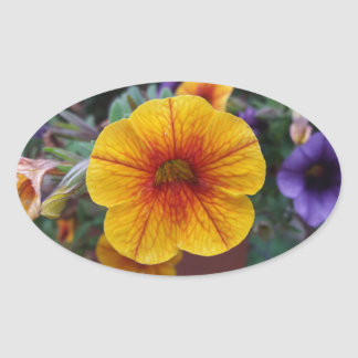 Orange Petunia Oval Sticker
