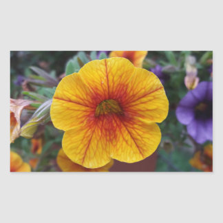 Orange Petunia Sticker