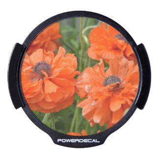 Orange Poppies LED Auto Decal