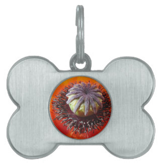 Orange Poppy Center Pet Name Tags