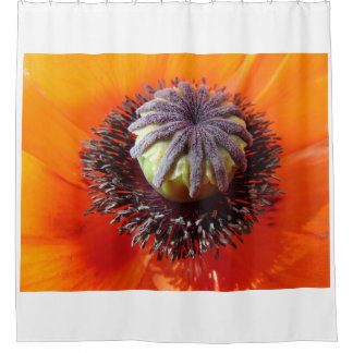 Orange Poppy Center Shower Curtain