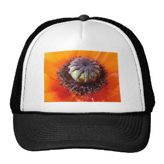 Orange Poppy Center Trucker Hat