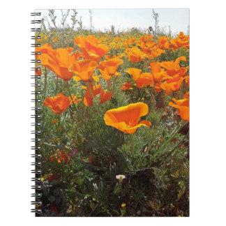 Orange Poppy Field of Flowers Notebook