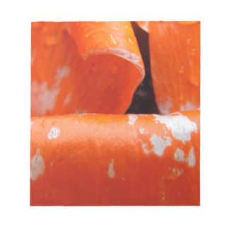 Orange Poppy Petals Notepads