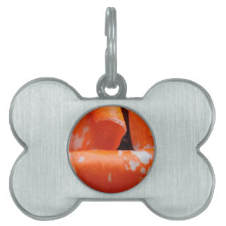 Orange Poppy Petals Pet Tags