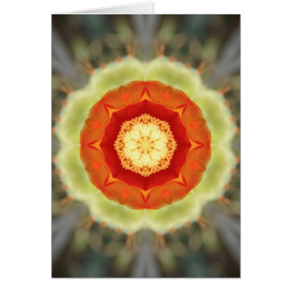 Orange Prickly Pear Blossom Note Card