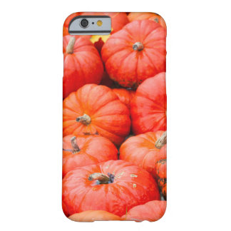 Orange pumpkins at market, Germany Barely There iPhone 6 Case