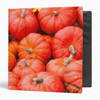 Orange pumpkins at market, Germany Binder