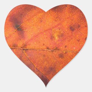 Orange-Red Autumn Leaf Photo Stickers