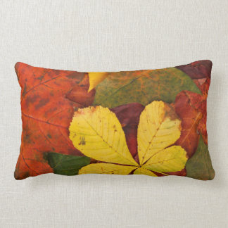 Orange, Red, Yellow Autumn Leaves Outdoor Pillow