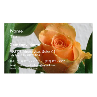 Orange Rose Against The White Wall Business Card Template