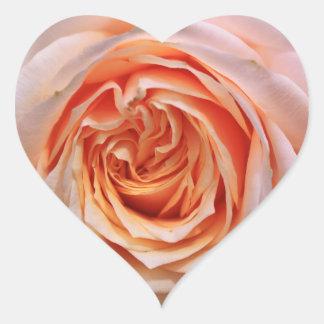 Orange rose blossom heart sticker