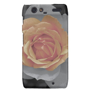 Orange rose blossoms print motorola droid RAZR cases