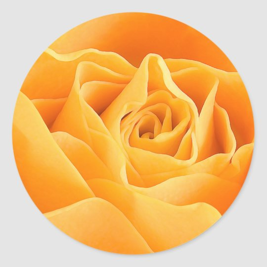ORANGE ROSE CLASSIC ROUND STICKER