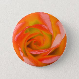 Orange Rose Close-up 2 Inch Round Button
