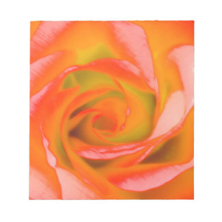 Orange Rose Close-up Notepad