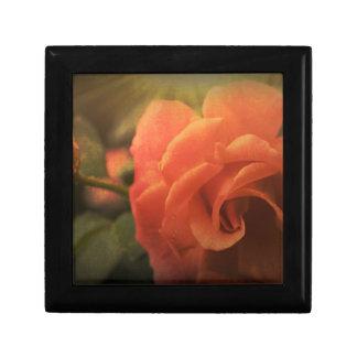 Orange Rose Gift Box
