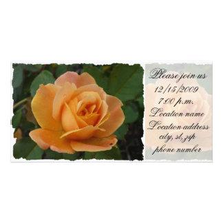 Orange Rose Please join us Photo Cards