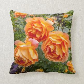 Orange roses,  garden pillow