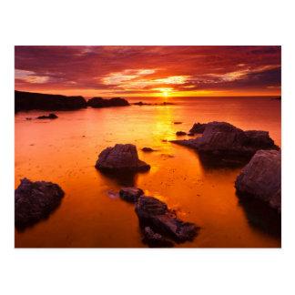 Orange seascape, sunset, California Postcard