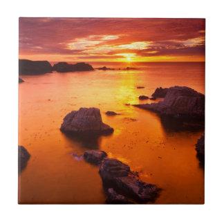 Orange seascape, sunset, California Tiles