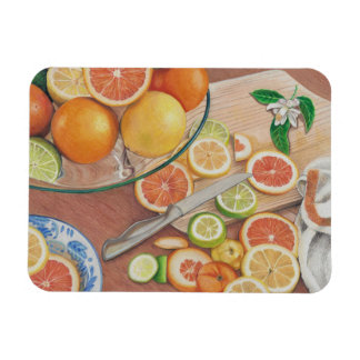 orange slice display art print on magnet