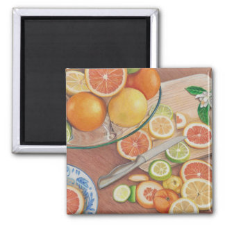 orange slice display coloured pencil drawing print square magnet