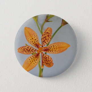 Orange spotted Iris called a  Blackberry lily 2 Inch Round Button