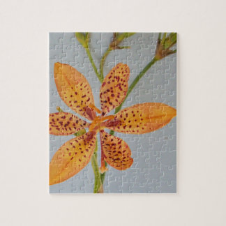 Orange spotted Iris called a  Blackberry lily Jigsaw Puzzle