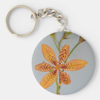 Orange spotted Iris called a  Blackberry lily Keychain