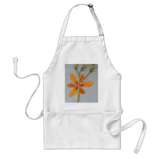 Orange spotted Iris called a  Blackberry lily Standard Apron