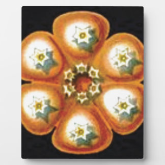 orange star flower pattern plaque