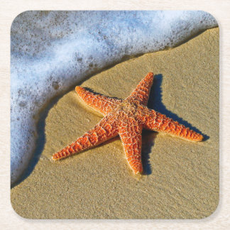 Orange Starfish On Beach Square Paper Coaster