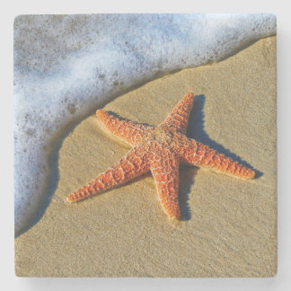 Orange Starfish On Beach Stone Coaster