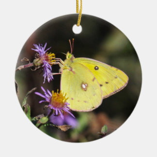 Orange Sulphur Ceramic Ornament