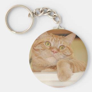 Orange Tabby Cat Basic Round Button Keychain