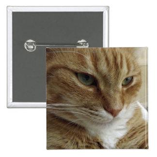 Orange Tabby Cat Button