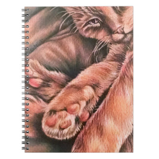 Orange Tabby Cat Drawing Curled Up Note Book