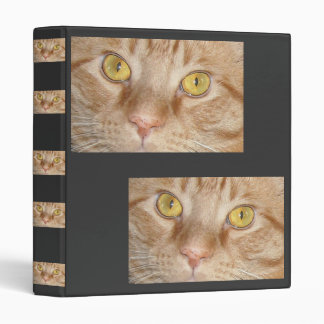 Orange Tabby Cat Eyes Vinyl Binder