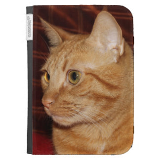 Orange Tabby Cat Face Profile Kindle Cover